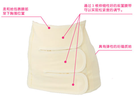 腰部内脏结构图